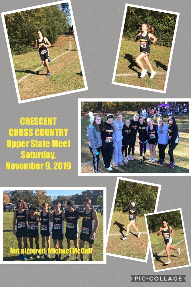 Tiger Cross Country State-Bound