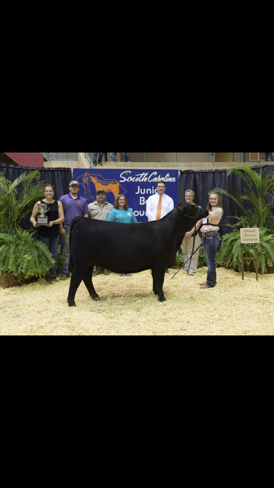 Hannah Wooten with her Crossbred heifer that won Reserve Supreme Champion.