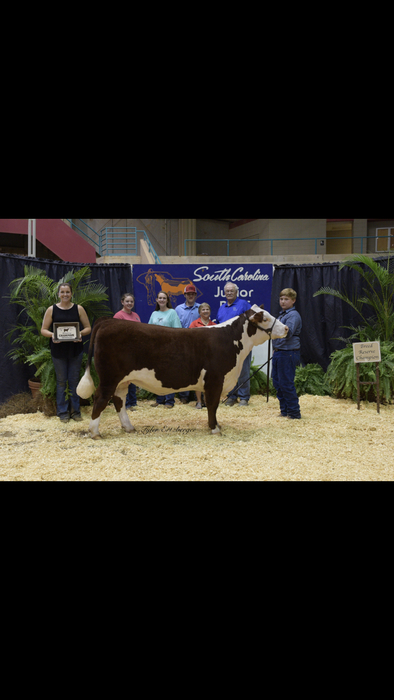 Brent Erwin with his Reserve Champion Hereford heifer.