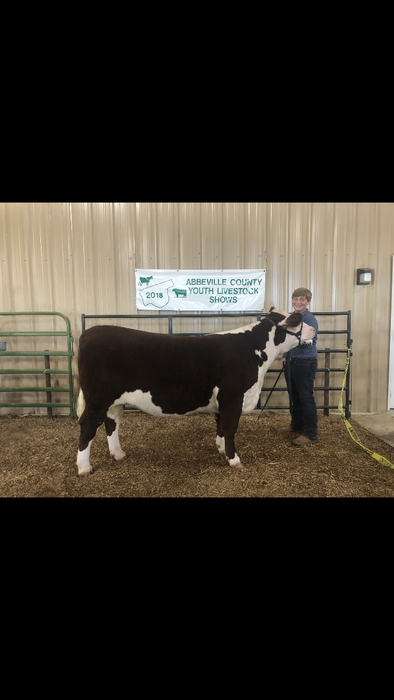 Brent Erwin with his Reserve Grand Champion Hereford