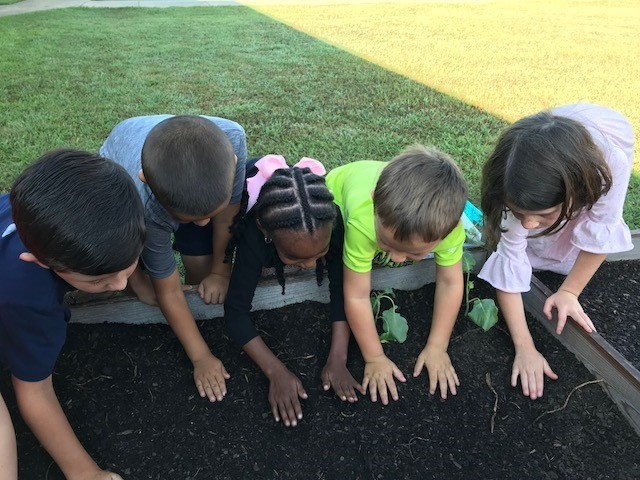 K5 Students Plant STEM Garden