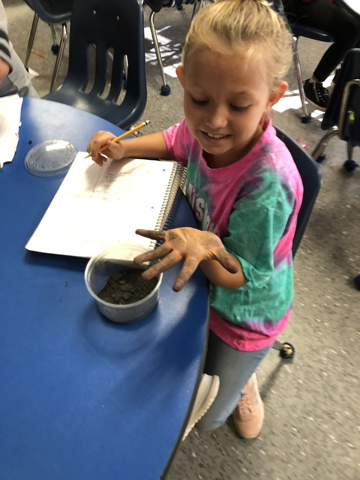 Third grade investigating soil!