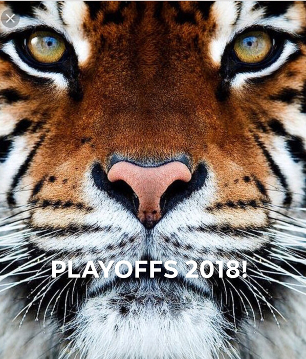 Playoff Tiger